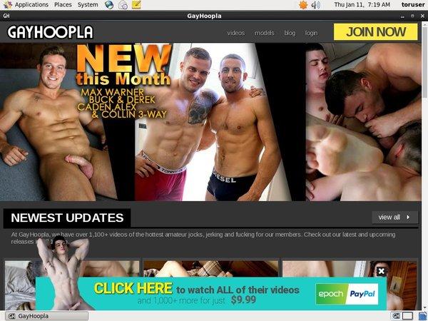 Gayhoopla.com Mobile